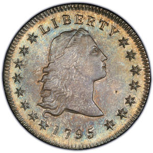 Obverse of 1795 Silver Dollar