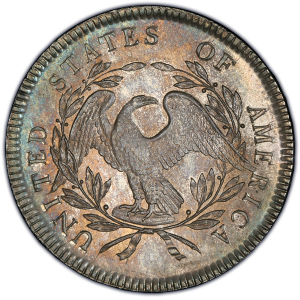 Reverse of 1795 Silver Dollar