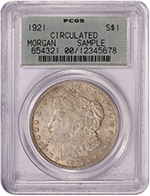 PCGS Sample Slab